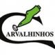 Carvalhinhos logo